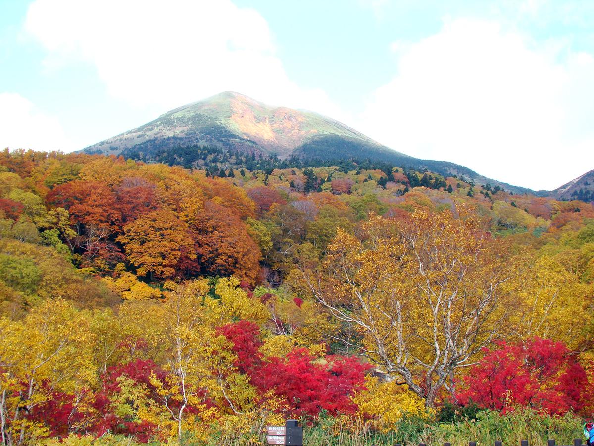 http://newhakucho.ojiji.net/03aki/07kouyou00/07hakkouda/hakkoudasan01.jpg
